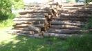 Frankford Ontario logs